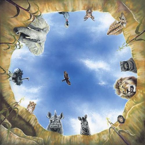 Tiere am Wasserloch